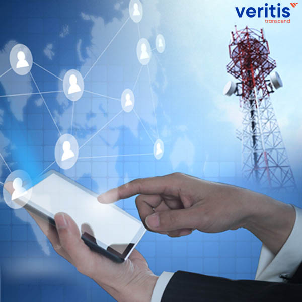 IT Infrastructure Support to Telecom Service Provider Thumb Veritis