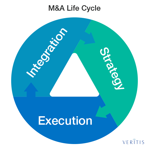 The Mergers and Acquisitions (M&A) Life Cycle
