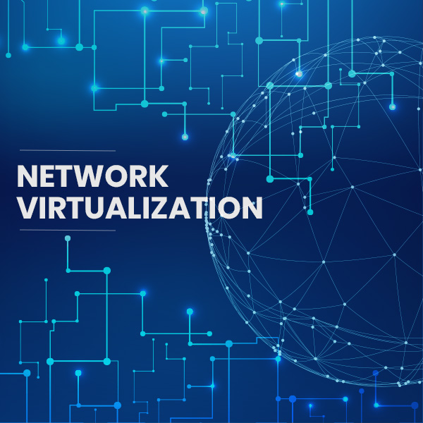 Network Virtualization Services