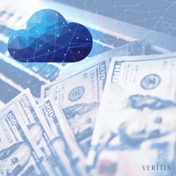 Cloud Cost Optimization and Management