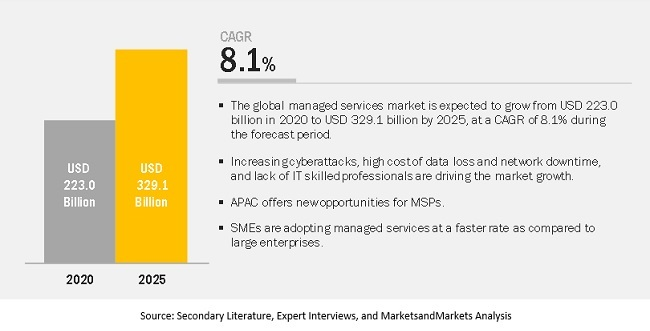 Managed IT Services Market Share